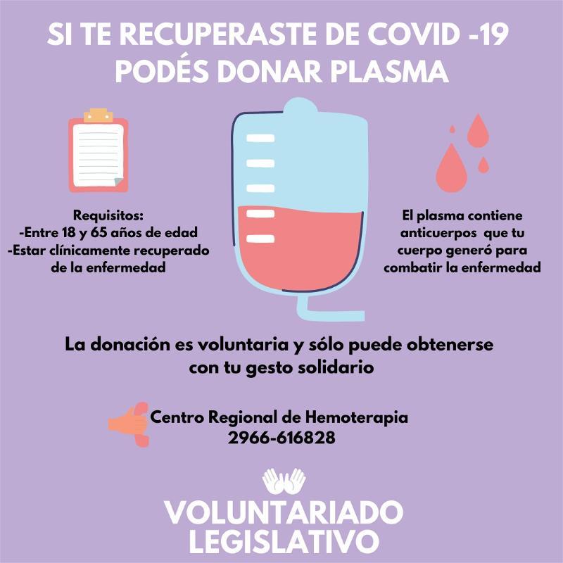 Voluntariado Legislativo dona Plasma