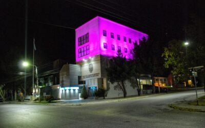 La Cámara del Pueblo se ilumina de rosa